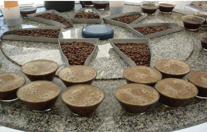 mesa com café e grãos