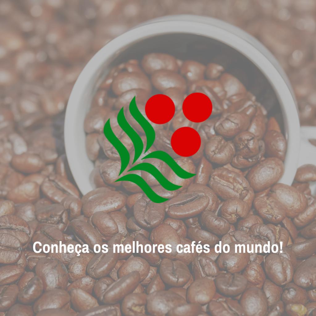 Os melhores café do mundo